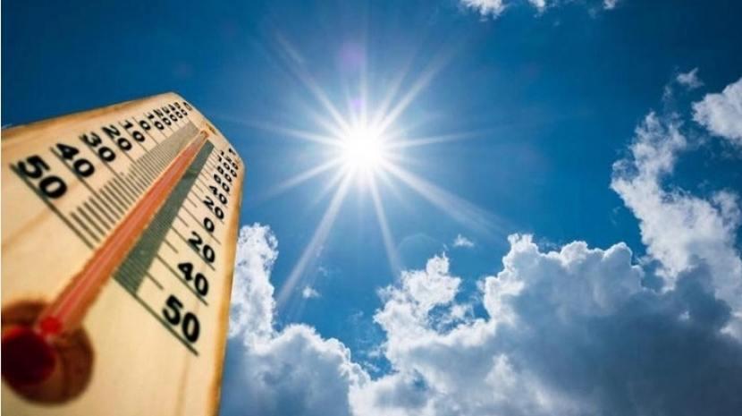 Cuáles son los cuidados y precauciones en época de calor